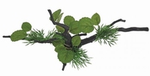 SF DECO SPIDERWOOD MET PLANT M