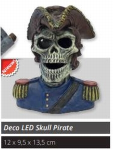 SF DECOLED SKULL PIRATE