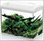 HS AQUARIUM PLATY 30 LED WIT 39X22X36CM