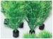 SF EASY PLANTS NANO PLUG 5CM 5 ST