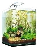 Nano / kleine aquariums